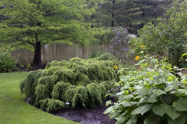 Rabbit Hill : Garden Directory : The Garden Conservancy