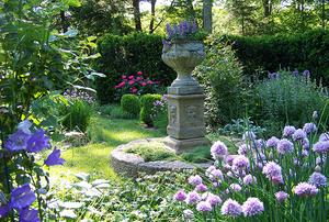 Jean Sander's Garden