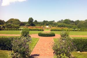 Alexandra Munroe & Robert Rosenkranz Gardens