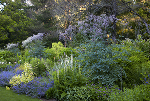 The Gardens Surrounding Digging Dog Nursery and the Private Gardens of Deborah Whigham and Gary Ratway