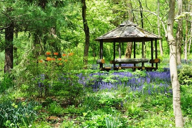 Spring_Hortulus_web