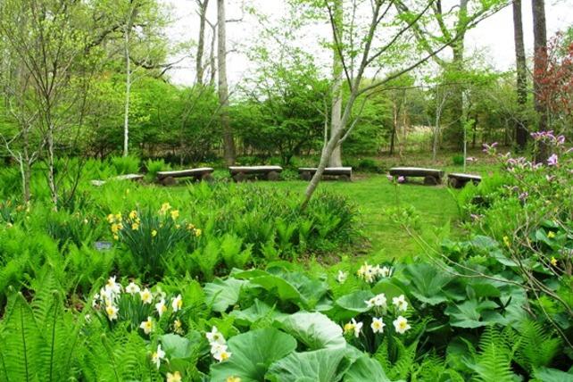 Spring_LongHouse_web