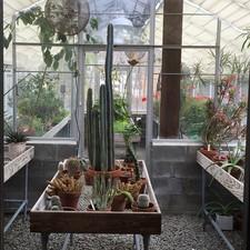 #gardenconservancy myhanamoon