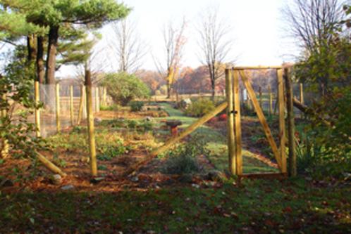 Steepletop garden fence oct 2014 3 web310x207