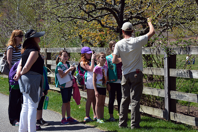 Girl-Scout-Troop-at-Steinhardt-Garden-DSC_4357