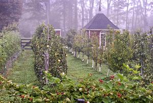 Digging Deeper: Growing Beautiful Food - Stonegate Farm Tour with Matthew Benson