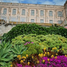 #gardenconservancy glitter_in_the_garden