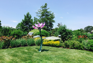 Beth Deutch Garden
