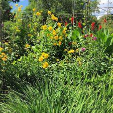 #gardenconservancy proftagg