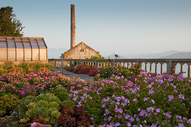 WOW presents: Restored Gardens of Alcatraz