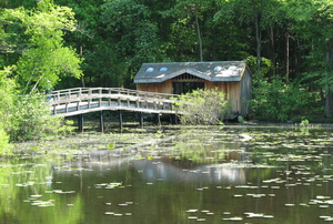 The Wildflower Island at Teatown Lake Reservation