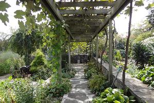 Filios Garden