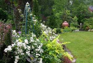 Ellen Lathi's Garden