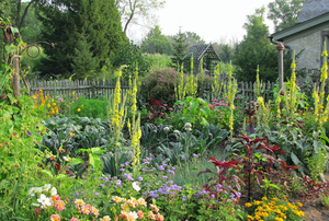 Garden Directory The Garden Conservancy