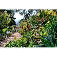 #gcopendays gardenonblog