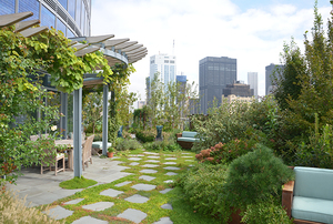 Digging Deeper: Into the Blue, Pushing Boundaries on a Rooftop Garden