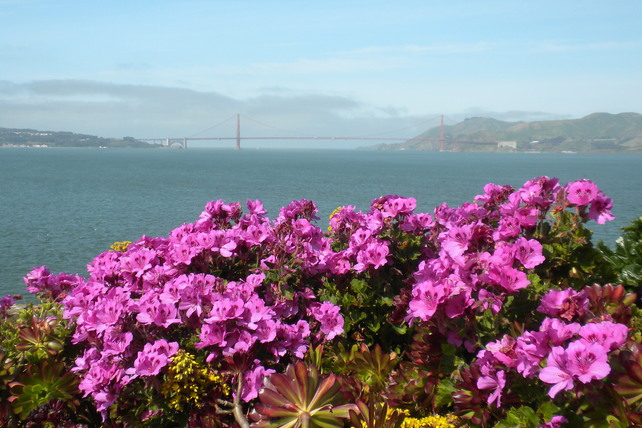The Gardens of Alcatraz, San Francisco, California