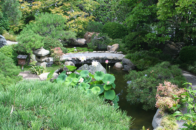 HannahCarterJapaneseGarden_pond&bridge_WEB650x433