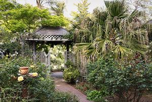 Edith Bergstrom's Garden