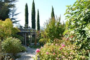The Sanders Garden