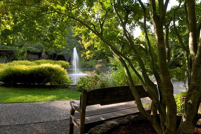 Marin Art and Garden Center : Garden Directory : The Garden Conservancy