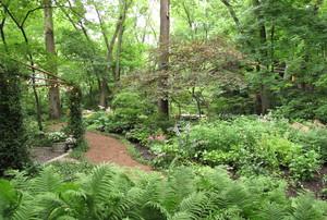 Braeburn Garden
