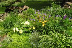 Bordoni's Garden