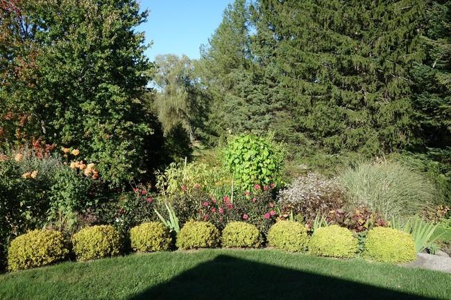 The Harris Garden