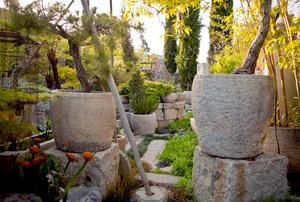 Garden of Cevan Forristt