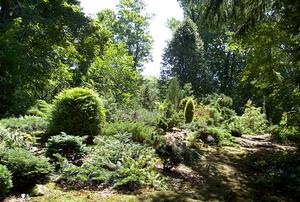 Garden of Jean & John Nonna