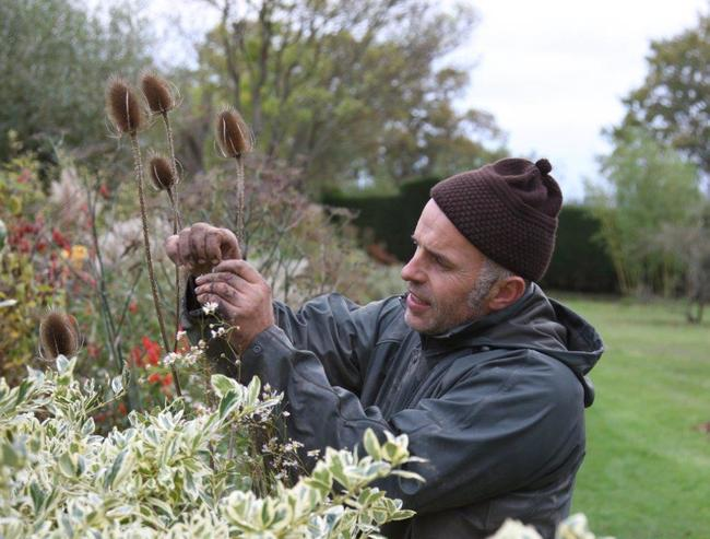 Designing with Plants the Great Dixter Way