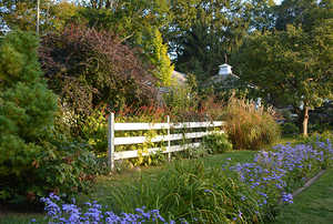 Digging Deeper: Spectacular Late-Season Garden Interest—A Workshop with Lynden Miller