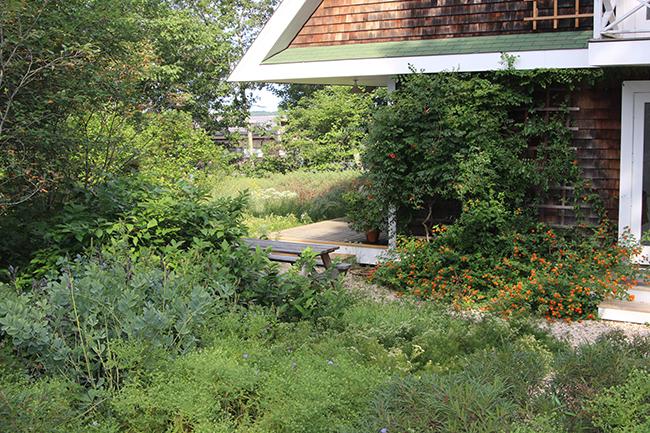 Birdhouse Garden : Garden Directory : The Garden Conservancy