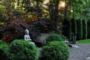 Gardens at First Light with Stacy Bass