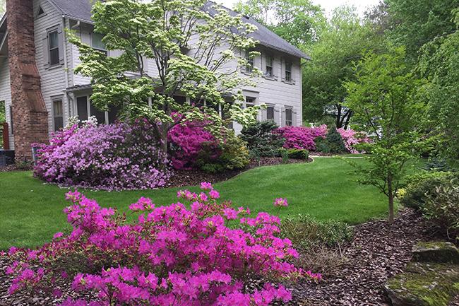 Jack Lagos : Garden Directory : The Garden Conservancy