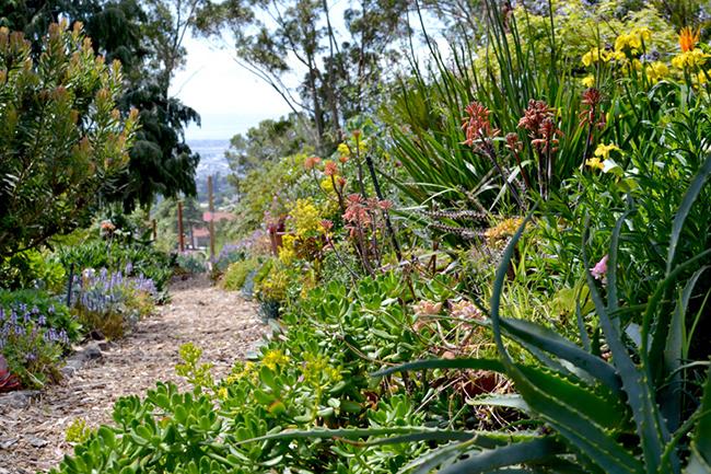 San Francisco East Bay, CA Open Day. Leianneu0027s Garden ...