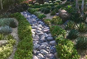 The Chung Garden