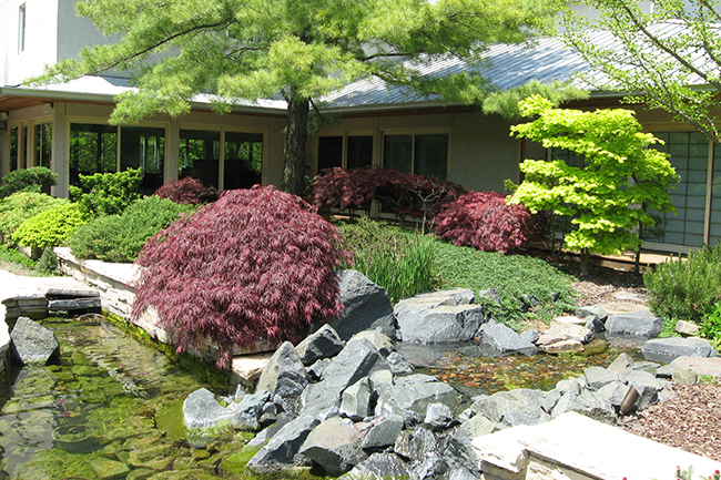 Digging Deeper: Visions of Nature—Gardens of Nicole Williams & Larry Becker