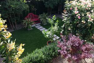 Garden of Kathleen Losey