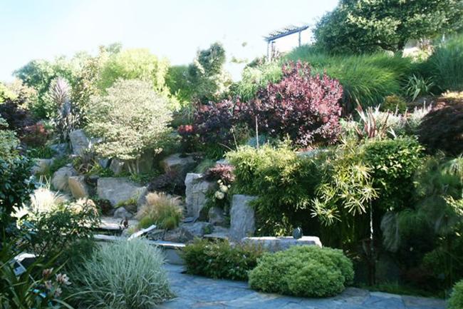 Ring Mountain Hillside Garden