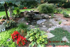 Basford Family Garden