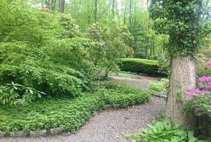 Ross Gardens