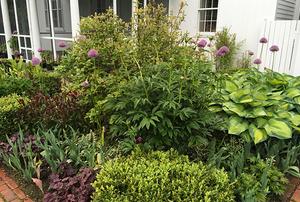 Thoron Gardens