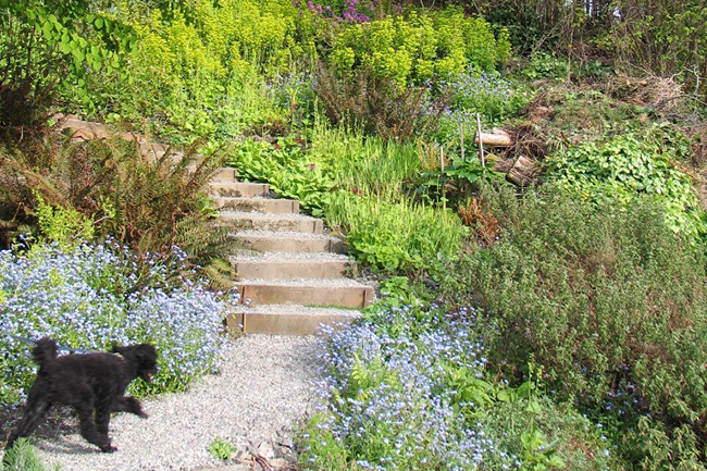 The Value of Public Gardens in the Northwest :: Events : The Garden ...