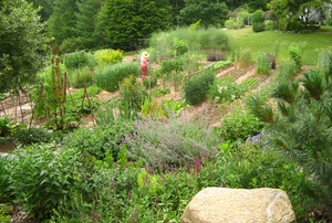 Brian Stroffolino's HeartLand Farms and Sylvia Davatz's Garden