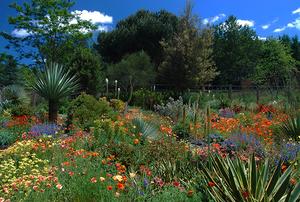 Northwest Garden Nursery