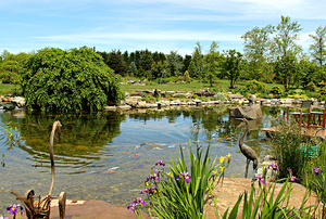 Digging Deeper: Rocks, Ponds, Waterfalls, and Exotic Trees—A Strolling Garden to Soothe and Stimulate