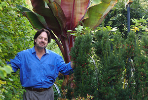 Digging Deeper: Natural is for Wimps: Training Plants into Extraordinary Shapes Members 5 p.m.