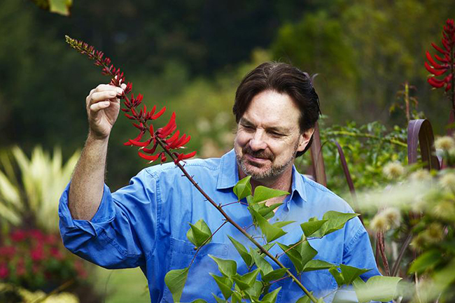 Digging Deeper: Natural is for Wimps—Training Plants into Extraordinary Shapes