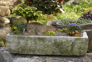 Digging Deeper: Alpine Troughs and Treasures